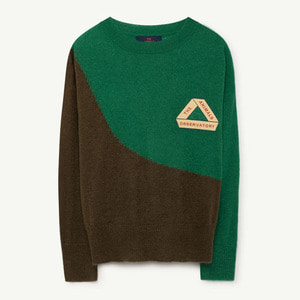 Bull Sweater (green triangle)